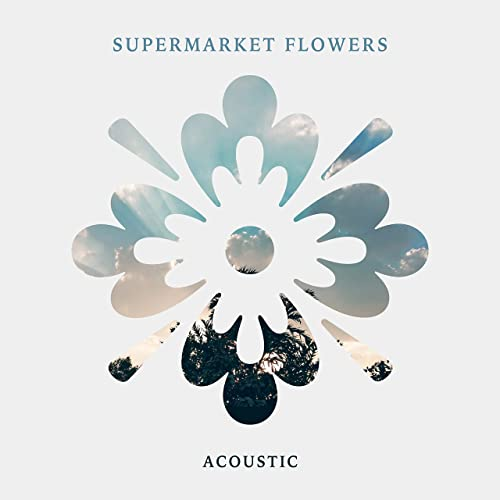 Supermarket Flowers (Acoustic) by Amber Leigh Irish on
