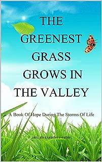 Best grass valley storm Reviews
