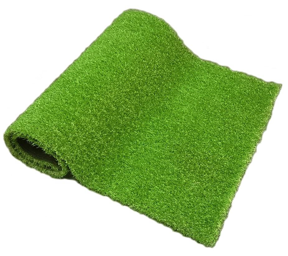 含意同一性誓いガーデンガーデン 色までリアルなロール人工芝 やわらかタイプ 夏色 芝丈30mm 幅1m×2mロール 自然反射タイプ 安全性検査済 FME-THN3002-NTU