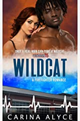 Wildcat: A Firefighter Romance (MetroGen After Hours Book 1) Kindle Edition