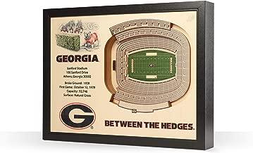 NCAA Georgia Bulldogs 25-layer stadiumview فنية جدارية ثلاثية الأبعاد