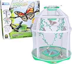 Uncle Milton Butterfly Farm Live Habitat - Observe Butterfly Lifecycle in Garden – Includes Voucher to Redeem for Caterpillars
