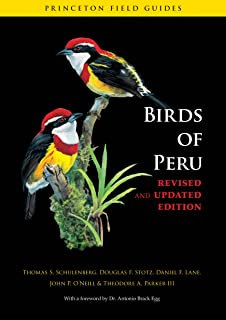 Birds of Peru: Revised and Updated Edition (Princeton Field Guides Book 63) (English Edition)