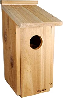 Best little owl tree house Reviews