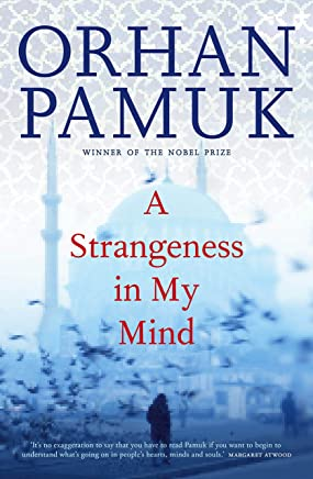Strangeness in My Mind (English Edition)