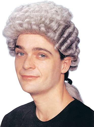 Mens Barrister grau Wig Accessory for Judge Law Court Fancy Dress Wig by Partypackage Ltd