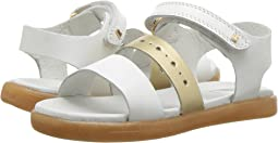 Bobux Kids - I-Walk Trinity Sandal (Toddler)