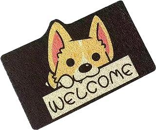 Doormat Rug Outdoor, Durable Doormat Indoor Outdoor, Stylish Cartoon Design, Non-Slip, Soft and Elastic, Outdoor Mat is Su...