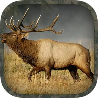 Best bull hunting games Reviews