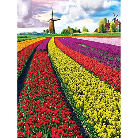 DIY 5D Diamond Painting Kit for Adult Kids Full Drill Embroidery Cross Stitch Picture Supplies Arts Craft for Home Wall Decor