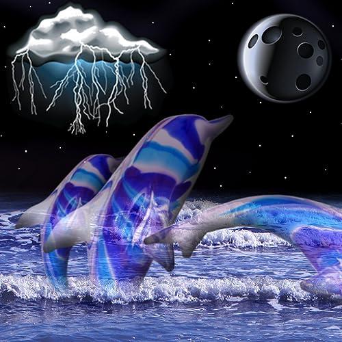 Delphin Uhr und Wetter