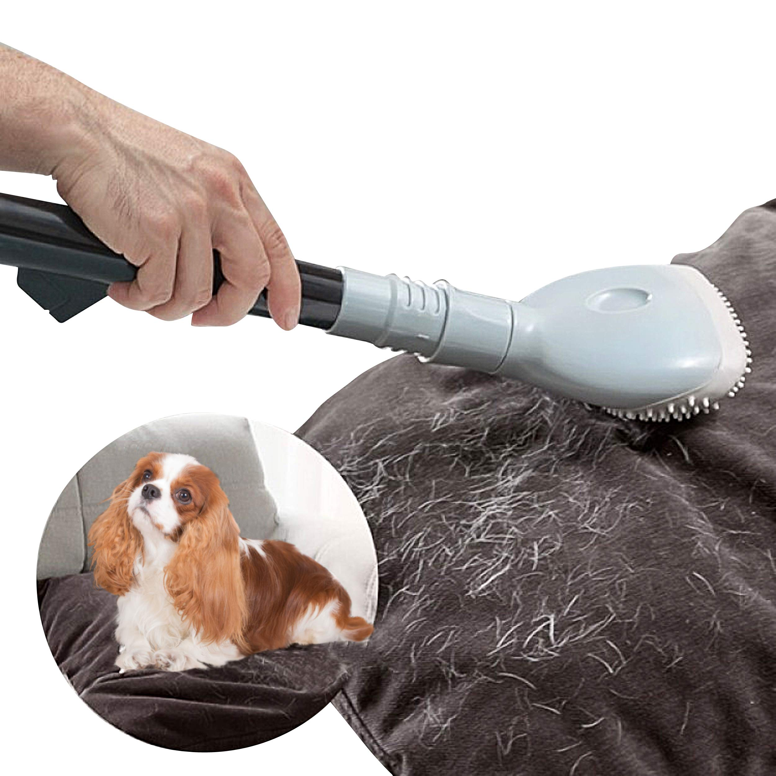 Oramics profesional para aspiradora el pelo de animal universal ...