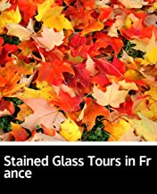 Illustrated Stained Glass Tours in France: A novel about a sectSelected educational books (English Edition)