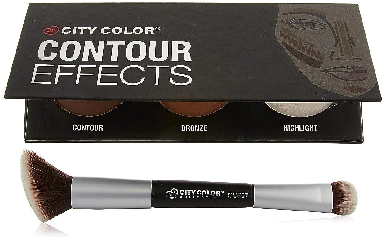 仮定するキャップトロリーCITY COLOR Contour Dual-Ended Brush (並行輸入品)