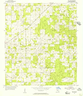YellowMaps Mayo NE FL topo map, 1:24000 Scale, 7.5 X 7.5 Minute, Historical, 1955, Updated 1956, 26.8 x 23 in