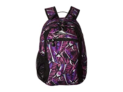 High Sierra Curve Backpack (Rainforest/Black) Backpack Bags
