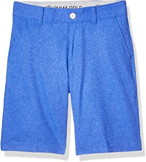 PUMA Boys Boys 2018 Boy's Heather Pounce Short 576030-P
