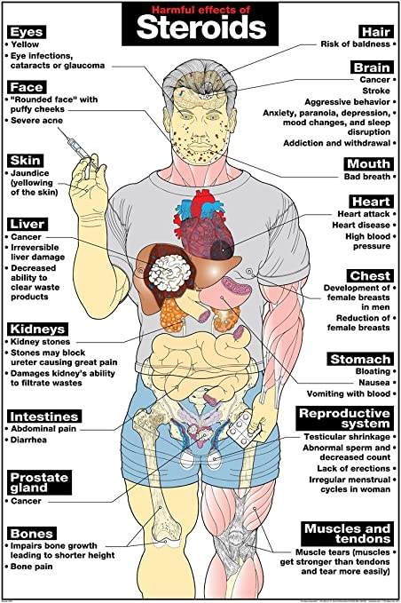 Steroids harmful effects on the body why are steroids considered cheating