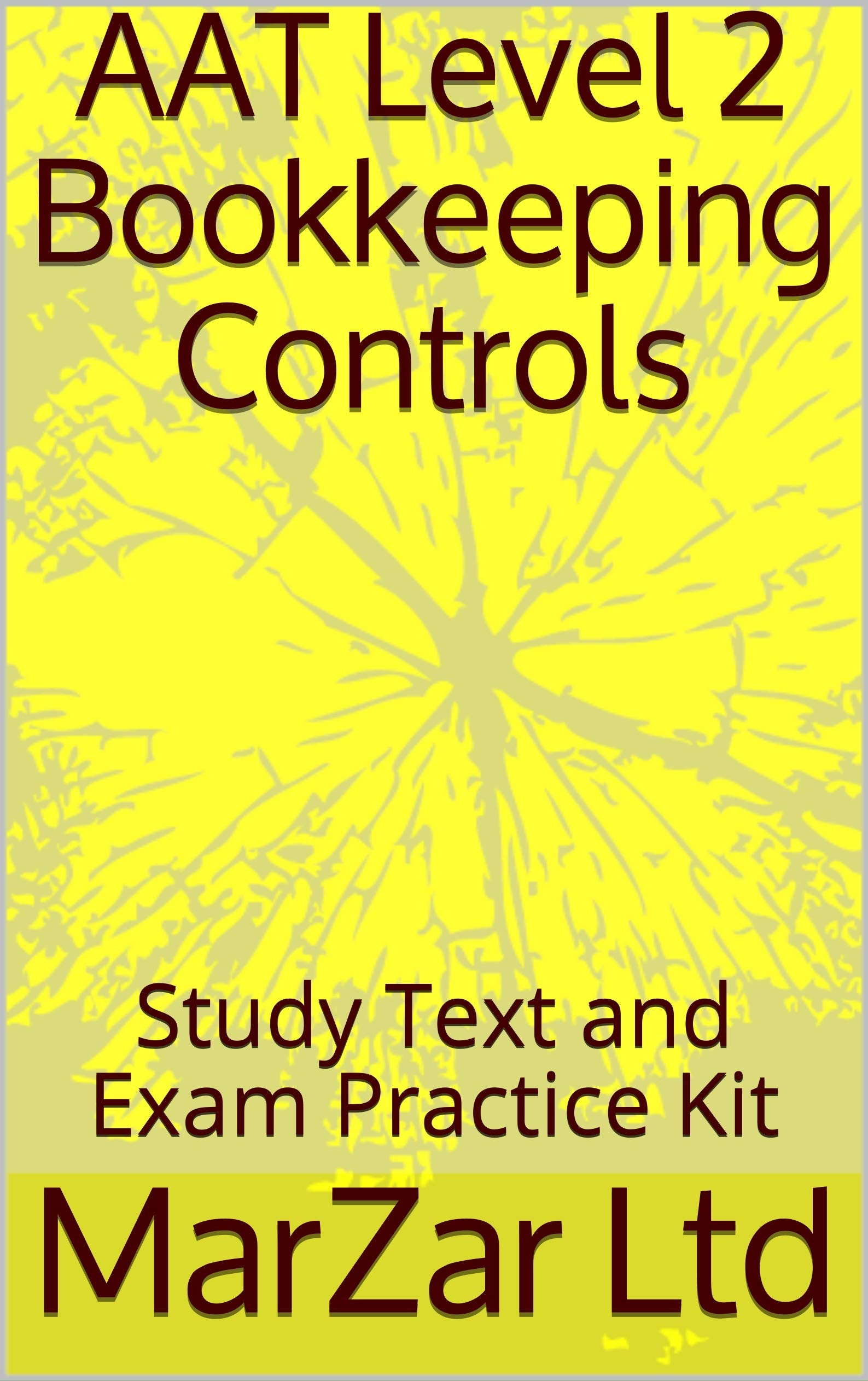 AAT Level 2 Bookkeeping Controls: Study Text and Exam Practice Kit