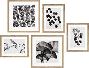 Kate and Laurel Black and White Farmhouse Florals Art Set, Set of 5, Natural, Rustic Wall Art and Home Decor