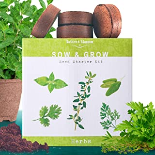 Nature's Blossom Herb Garden Seed Starter Kit. Grow 4 Herbs from Organic Seeds - Basil, Cilantro, Parsley, Thyme. A Complete Beginner Gardeners Gardening Set. Unique Holiday Gift Idea.