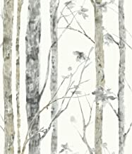 RoomMates Birch Trees Peel and Stick Wallpaper