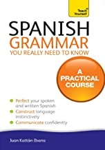 Spanish Grammar You Really Need To Know: Teach Yourself (Teach Yourself Language Reference) (English Edition)