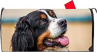 Best bernese mountain dog mailbox Reviews