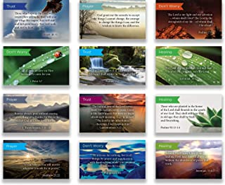 Logos Trading Post Pass Along Scripture Card Variety Pack | 12 Hand Picked Designs | 5 of Each Design | Themes: Don't Worr...