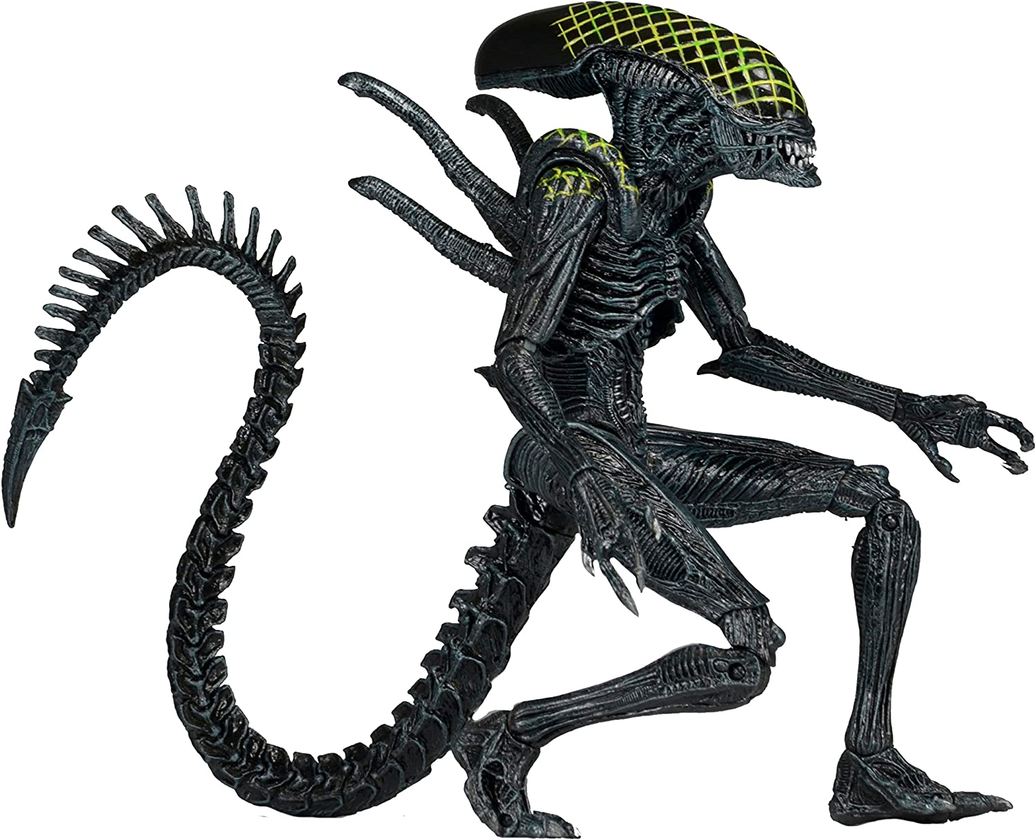 Alien  Alien vs Protator Actionfigur Serie 7 Grid Alien NECA