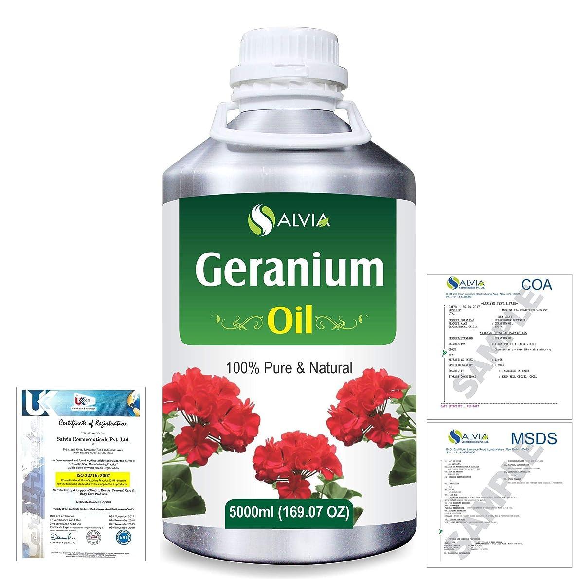 船外ディスコハリウッドGeranium (Pelargonium Geranium) 100% Natural Pure Essential Oil 5000ml/169fl.oz.