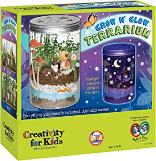 Best mini explorer light up terrarium Reviews
