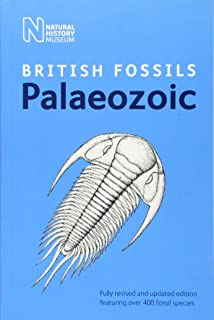 Best british palaeozoic fossils Reviews