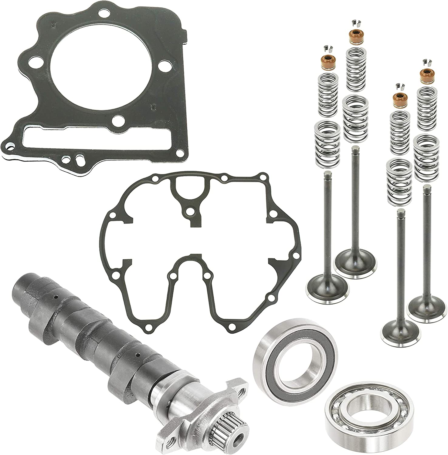 Caltric At the price Compatible with Complete Camshaft Cylinder Mail order Gasket Valve
