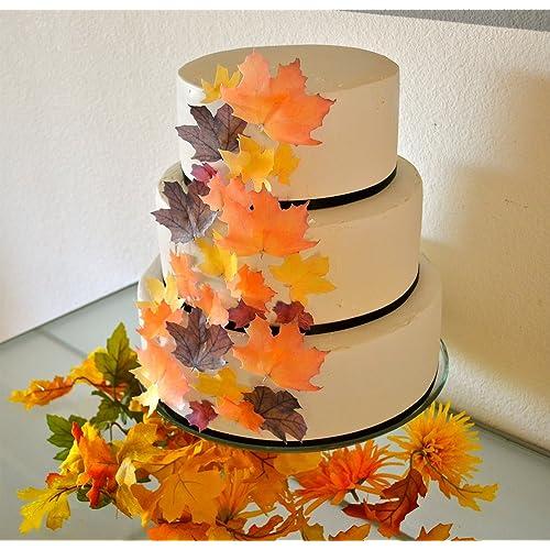 Thanksgiving Cake Decorations Amazon Com