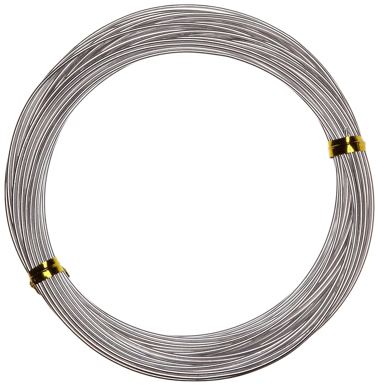 Efco 1 mm x 10 m Aluminium Anodised Round Wire, Silver