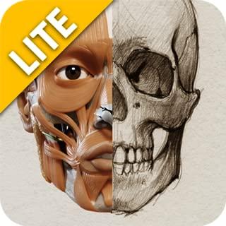 3D Anatomy for the Artist Lite