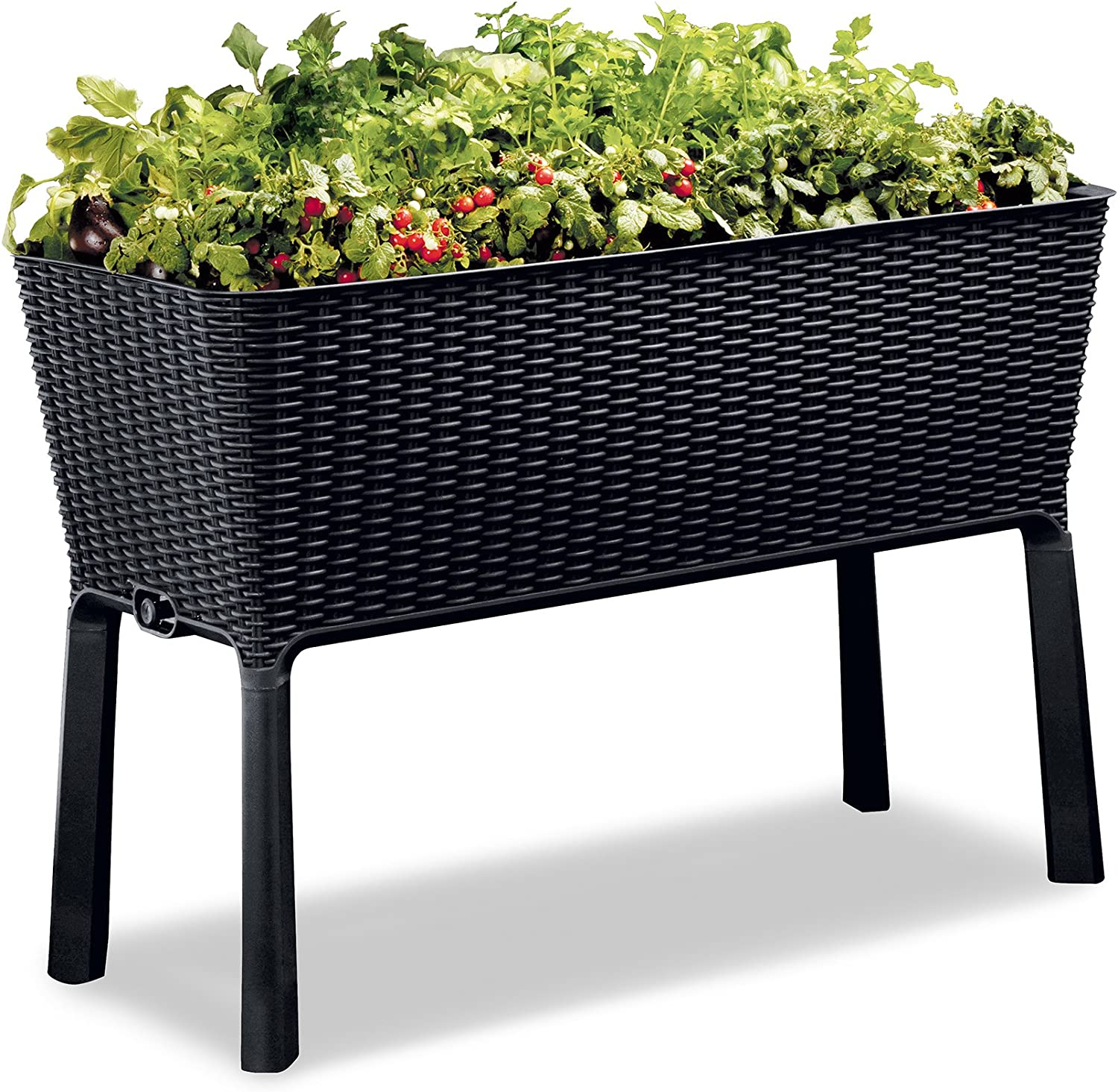 Free Shipping Cheap Bargain Gift Keter 238699 Easy Grow Garden Bed Anthracite Ranking TOP16 Elevated