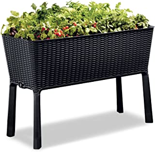 Keter Easy Grow 31.7 Gallon Raised Garden Bed with Self Watering Planter Box and Drainage Plug, Anthracite