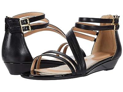 Rockport Total Motion Zandra Asym Ankle (Black) Women