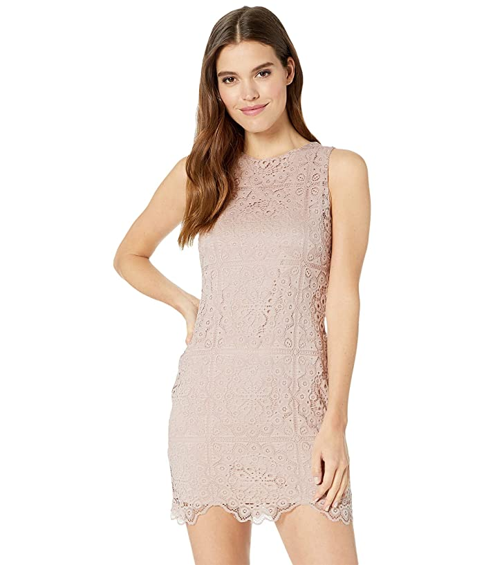 Jack by BB Dakota Ace Of Lace stretch Lace Dress (Mauve Rose) Women