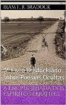 A ENCRUZILHADA DOS ESPÍRITOS ERRANTES: 3º Livro Bradockiano sobre Poesias Ocultas (Poesia Oculta)