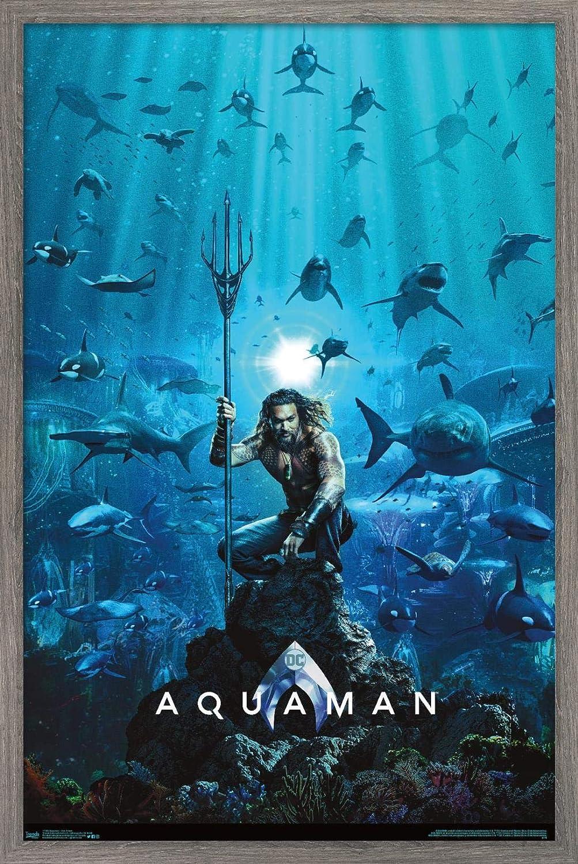 Trends International DC Comics Movie Brand new Aquaman Sheet Wall One Fort Worth Mall -