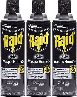 Raid Wasp & Hornet Killer Spray, 14 OZ (Pack - 3)
