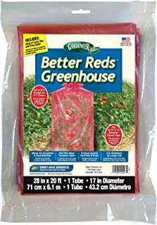 Best tomato plant greenhouse Reviews