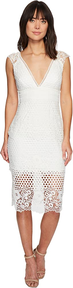 Laundry by Shelli Segal - V-Neck Venise Dress with Trim Detail