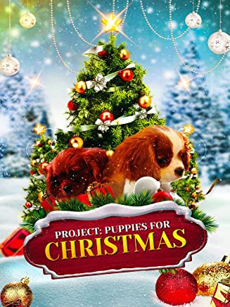 Project: Puppies for Christmas