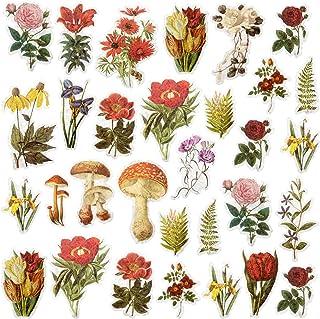 PAGOW 120pcs Vintage Flower Washi Decals, Doraking DIY Decoration for Laptop, Room, Kids, Envelopes, Scrapbook,Notebook, G...