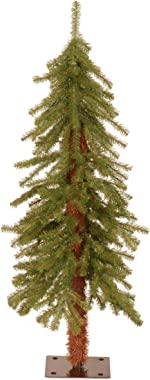National Tree Company Artificial Christmas Tree | Includes Stand | Hickory Cedar - 3 ft