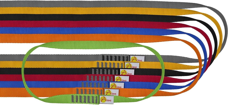 ALIENS Cinta Open Sling (carga de rotura 22 kN/2200 kg, 16 mm de ancho), diferentes longitudes en diferentes colores
